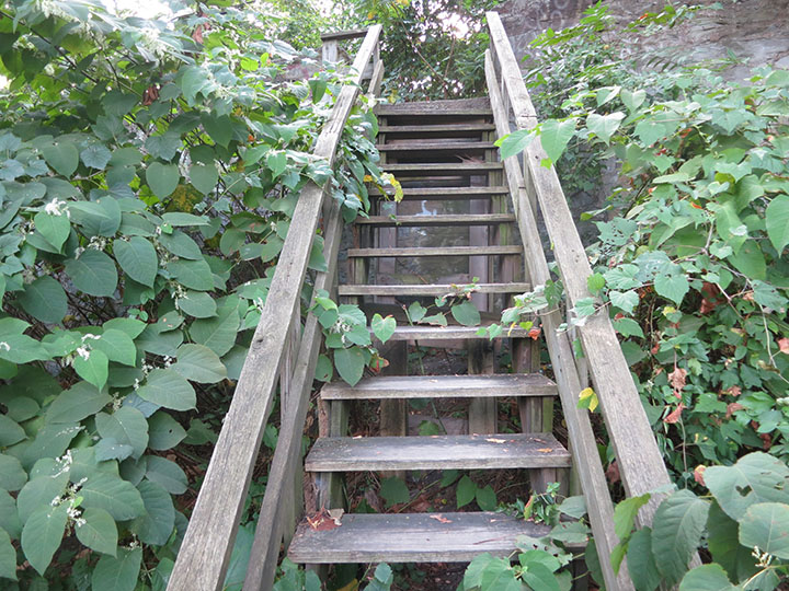 Mackey_St_Stairs2
