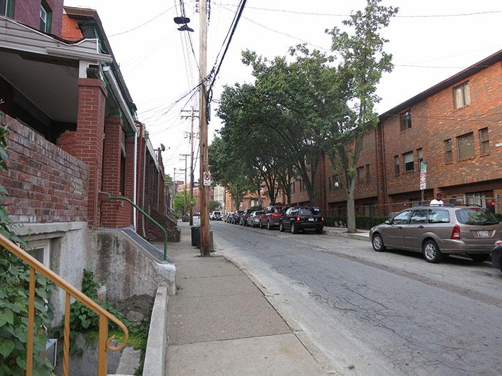 Neighborhood_Trees