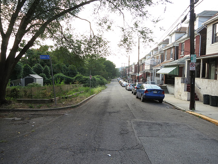 Tree_Lined_Lawn_Street
